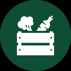 Organic Vege Boxes